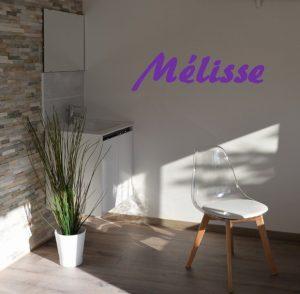 Salle de soin Mélisse